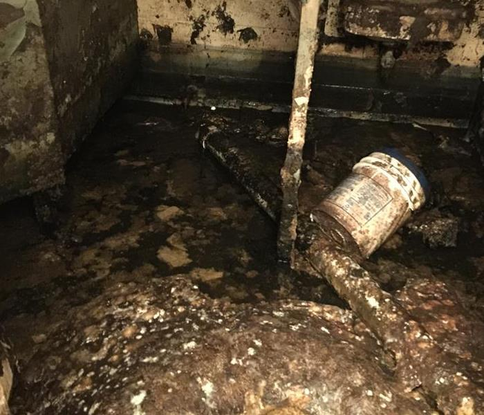 Servpro of east toledo gallery photos for Sewer backup smell in house