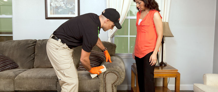 Toledo, OH carpet upholstery cleaning